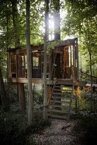 Maison dans les arbres